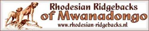 Rhodesian Ridgebacks of Mwanadongo