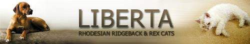 LIBERTA Rhodesian Ridgebacks