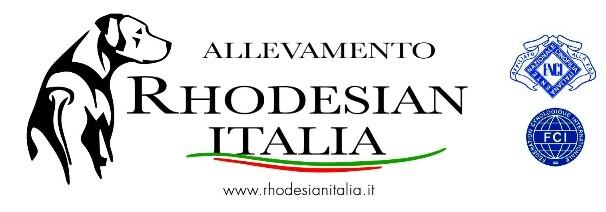 Allevamento Rhodesianitalia- Della Tenuta dell'Ermitage